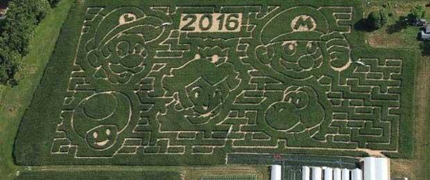 corn-maze-2016